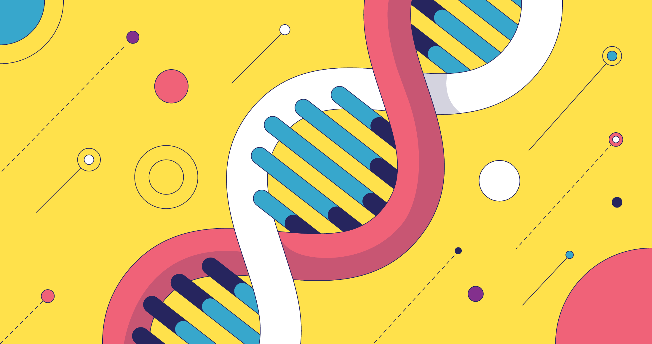 The Value of a Clear Brand DNA Across Your Full Sales Funnel
